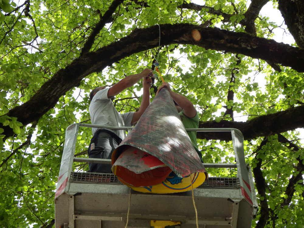 """Josef Büchelers """"Baumglocke"""" wurde am Montag gegenüber der Bacchus-Vinothek in einen Baum  gehängt. Foto: Moni Marcel"""
