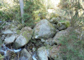 Der Stein mit dem Scheffelspruch. Fotos: him