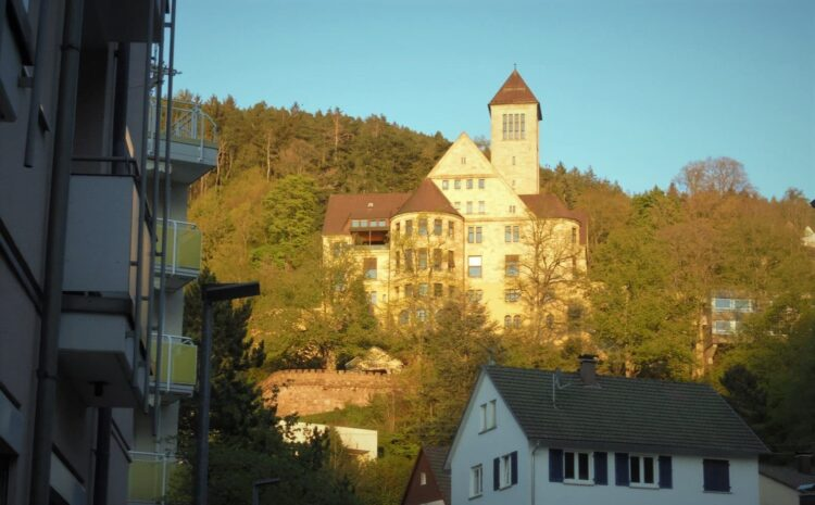 Stadtbildprägend: Gut Berneck in der Abensonne. Achiv-Foto: him