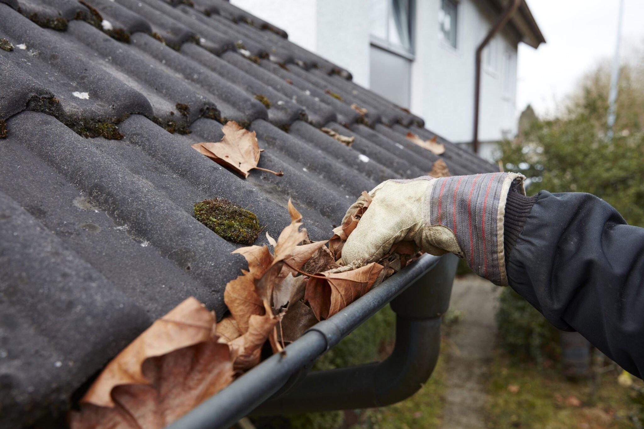 Wird die Regenrinne von Blättern befreit, am besten gleich nach losen Ziegeln Ausschau halten. (Foto: Bausparkasse Schwäbisch Hall/Scheyhing)