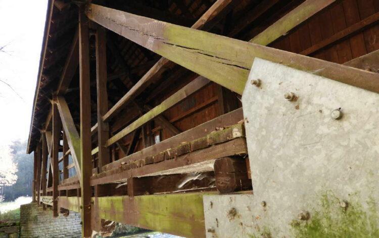 Die Brücke unterhalb der Neckarburg ist massiv durch Pilzbefall beschädigt und muss gesperrt werden.Foto: Ingenieurbüro Rehe