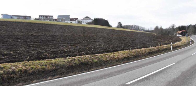 Zwischen der Oberndorfer Straße und der bisherigen Bebauung soll nun ein Baugebiet kommen. Bisher ist dort landwirtschaftliche Nutzung. Foto: wede