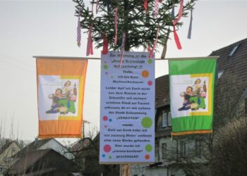 Der Waldmössinger Narrenbaum steht....