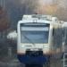 Im April und Mai  fährt die Ortenaubahn an zwei Wochenenden nicht bis Freudenstadt. Archiv-Foto: hm