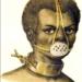 Mascara des flandres. Aus: Wikipedia.