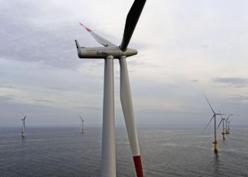 Windpark Baltic 1 in der Ostsee. Archiv-Foto: pm