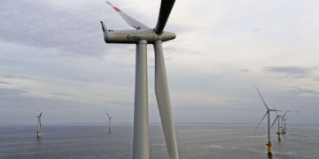 Windpark Baltic 1 in der Ostsee. Archiv-Foto: pm