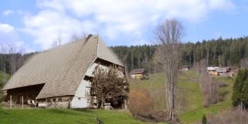 So könnte der Oberlehof im schwarzenbachtal aausgesehen haben. Fotomontage: Heimathaus/Edwin Klausmann