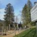 Seit ein paar Tagen in Schramberg wieder erlaubt: Sipielen auf dem Spielplatz, hier im Park der Zeiten. Foto: him