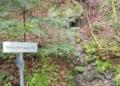 Die kleine Quelle am Winterberg erfreut die Wanderer auf dem Burgenpfad. Fotos: him