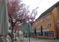 Die Luca App soll helfen, dass sich Fußgängerzonen bald wieder füllen. Foto: him