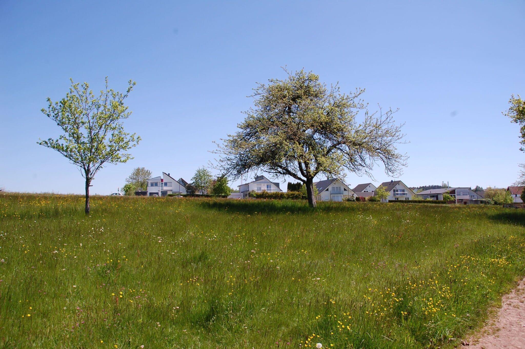 Trotz aller Bemühungen der Verwaltung konnte keine Einigung mit den Eigentümern erzielt werden. Für das Neubaugebiet Haldenhof wird nun ein zweistufiges Regelverfahren vorgeschlagen. Fotos: lm