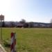 Weil die Stadt diese Wiese nicht kaufen kann, verzögert sich daas Bebauungpslanverfahren für die Erweiterung Haldenhof. Archiv-Foto: him