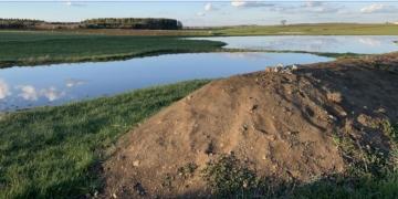 Im Gebiet Pferschelwiesen ist eine Seenlandschaft entstanden. Fotos: Link