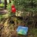 Die Stationen sind mit roten Luftballons gekennzeichnet. Foto: Grundschule Tennenbronn