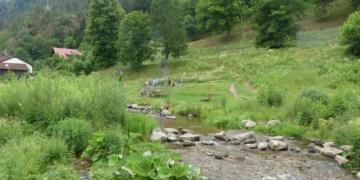 Die Stadt Schramberg wertete den ökologischen Zustand des Gewässerlaufes der Schiltach auf. Fotos: him