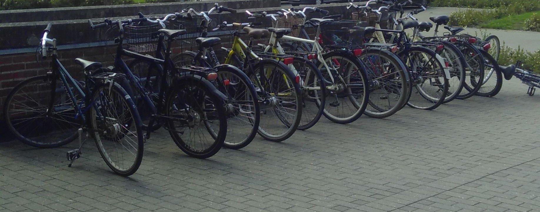 Auf dem Tennenbronner Fahrradmarkt finden alte Räder neue Besitzerinnen. Außerdem können am Samstag Wertstoffe abgegeben werden. Symbolfoto: lm