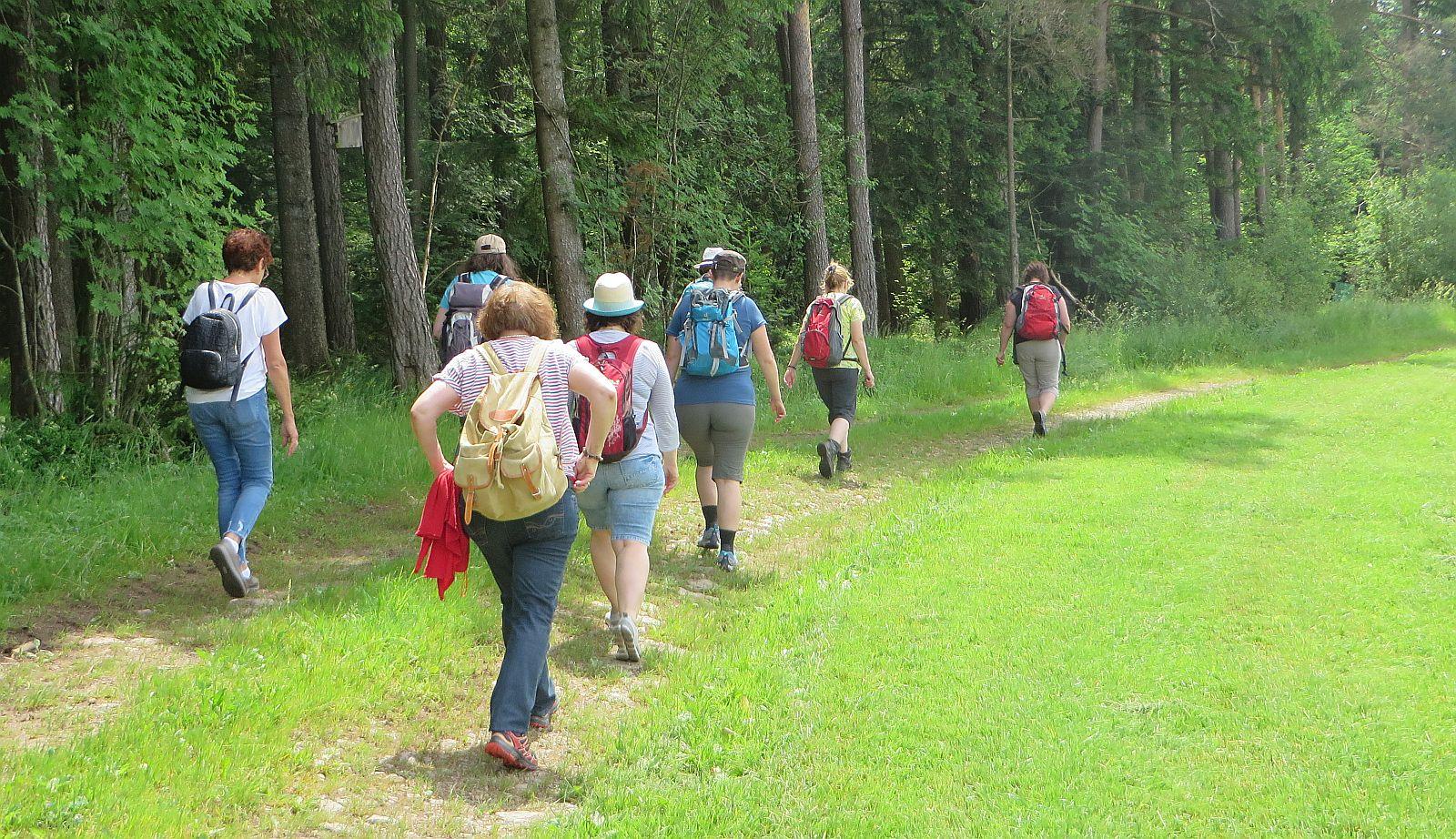 Immer mit Coronaabstand - die Wandergruppe auf dem Weg bei Heiligenbronn. Foto: Ginter
