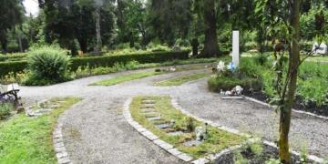 Urnengräber rund um einen Baum: Die Preise für Gräber gehen wieder nach oben. Foto: wede