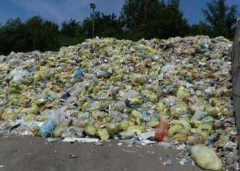 Gelbe Säcke mit Verpackungsmüll beim Entsorger Alba. Archiv-Foto: him