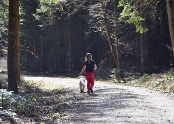 Beim Wandern durch den Wald ist Achtsamkeit gefordert – damit sich auch künftig Mensch und Tier an der beliebten Kraftquelle erfreuen können, mahnt die Stadtverwaltung Rottweil. Foto: Stadt Rottweil