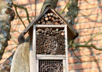 Insektenhotel. Symbolfoto: pixabay